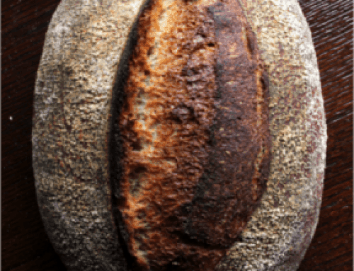 Community Grains Whole Wheat Country Loaf